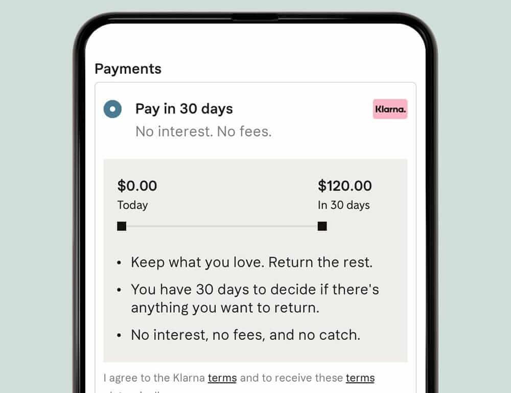 Klarna Interest Fees  How Does Klarna Make Money